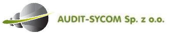 audit-system logo